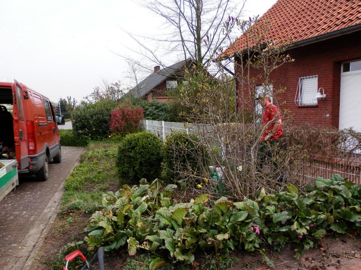 Trigala Armin Trimpe - Pflegearbeiten - Gartenpflege - Bild 01