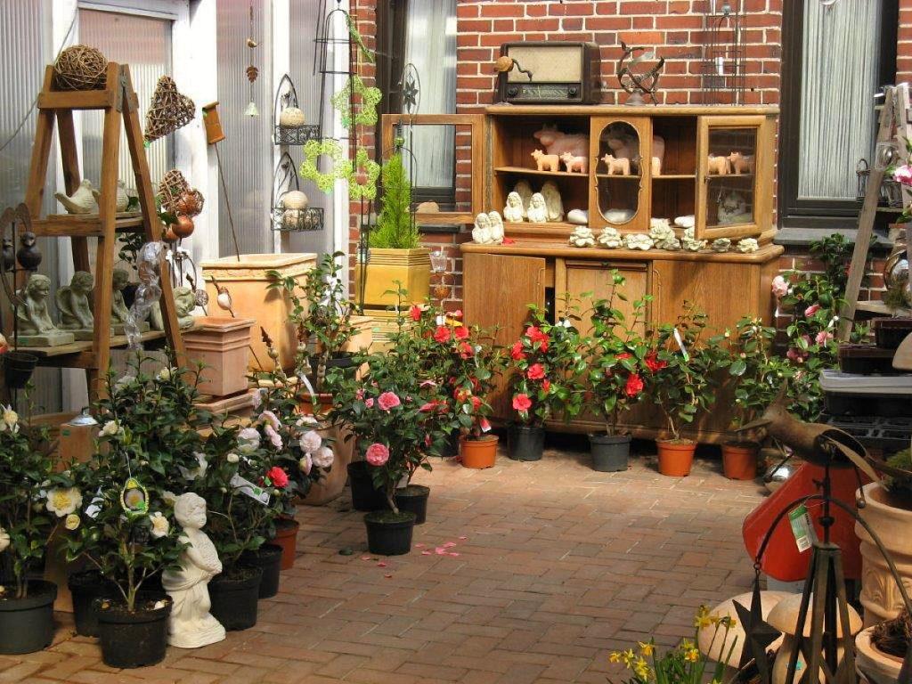 Trigala Armin Trimpe - Gartencenter - Keramit mit Kamelien
